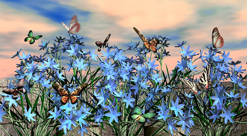 Butterflys are Free by Walter Colvin
