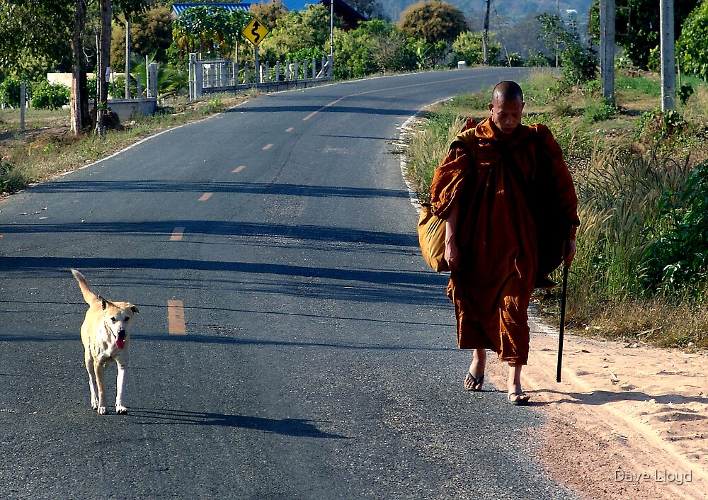 Monk And Dog by Dave Lloyd