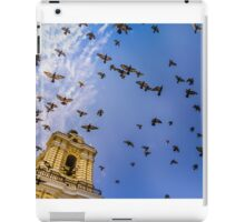 Avian Angels iPad Case/Skin