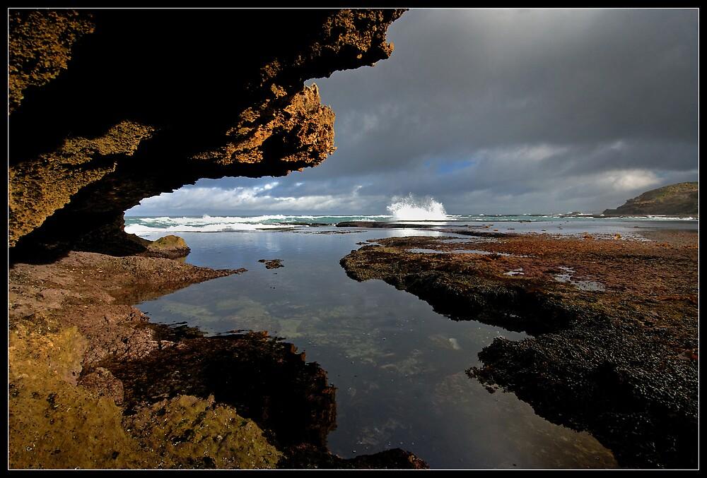 Back Beach Morning by Robert Mullner