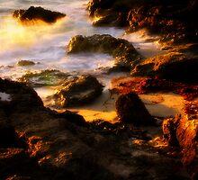 cottesloe beach by alistair mcbride