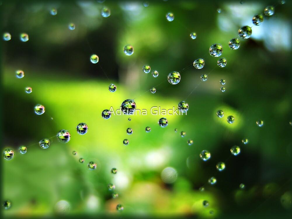Spring Showers by Adriana Glackin