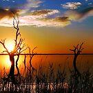 Lake Bonney Sunset by Annette Blattman