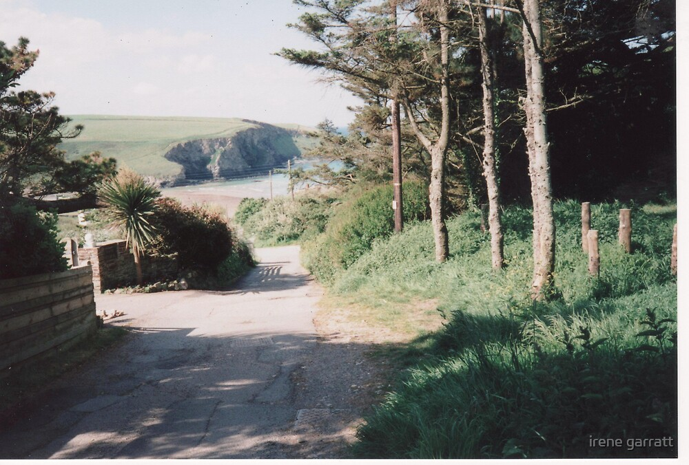 Tranquil Cornwall by irene garratt