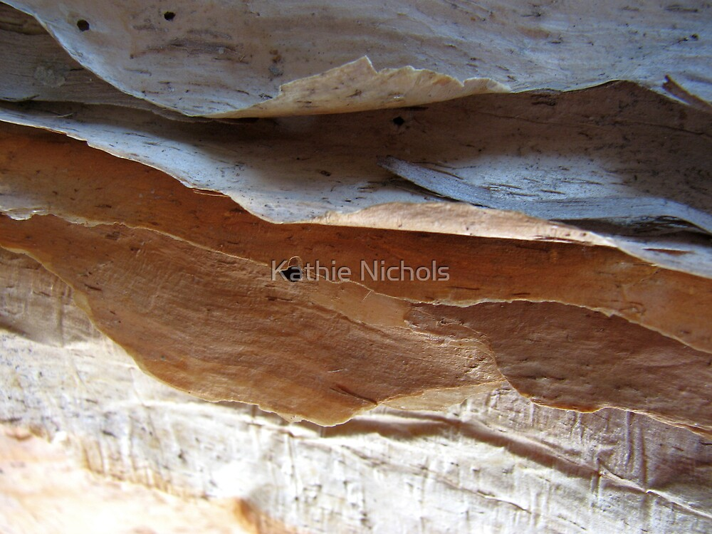 Waves In Bark by Kathie Nichols