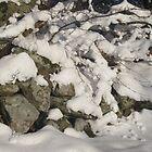 Snowy Wall by Jennifer J Watson