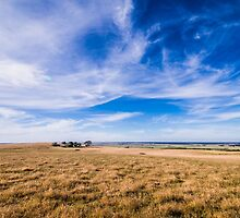 Sunny Day by Graeme-Mellor