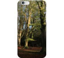 New Forest Beeches iPhone Case/Skin
