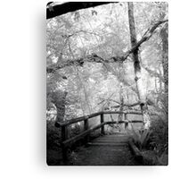 Bellingham, film infrared medium format print Canvas Print