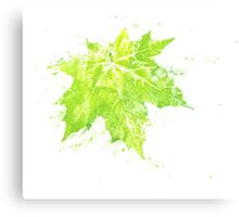 Imprint of Maple Leaf 4 Canvas Print