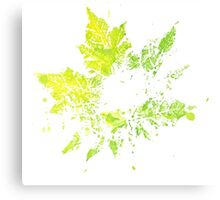 Imprint of Maple Leaf 3 Canvas Print