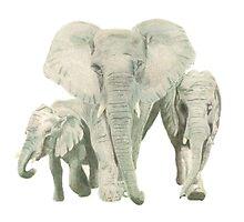 """""""Elephants"""" Photographic Print"""