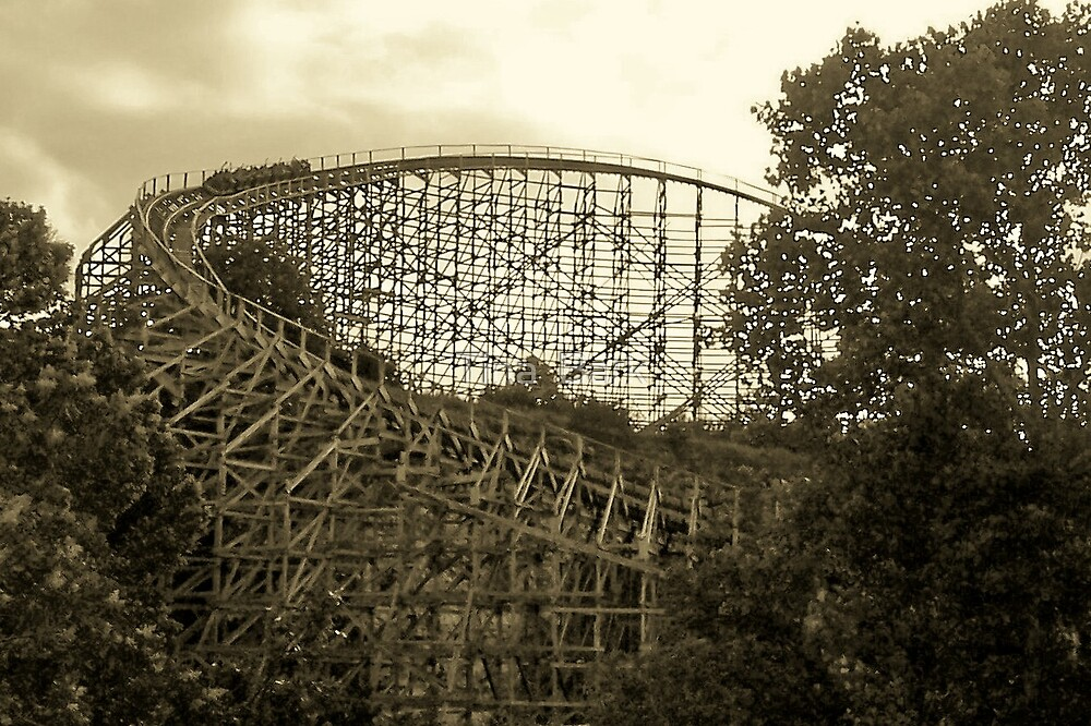 wooden roller coaster by Tina  Bark