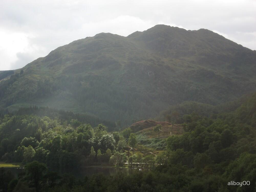 Landscape by aliboy00