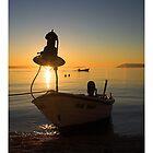 Sunfisher by Jörg Holtermann