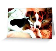 A doggy friend Greeting Card