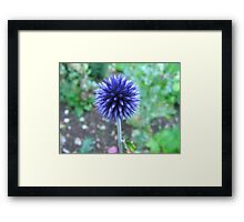 Blue Spike Framed Print