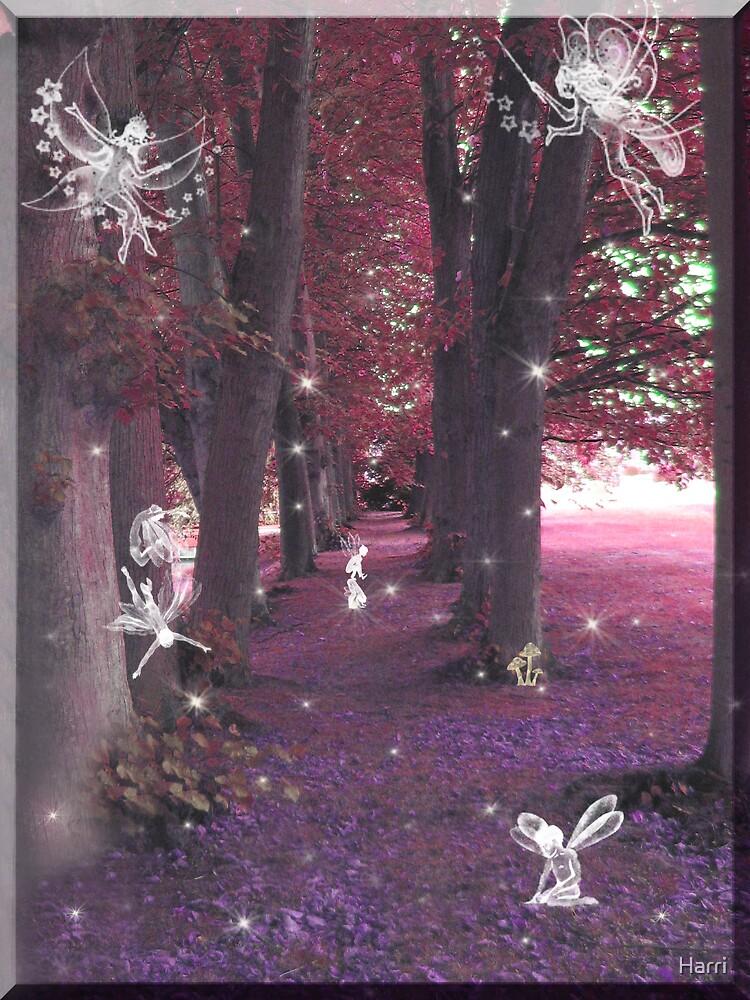 Purple Haze Fairies by Harri