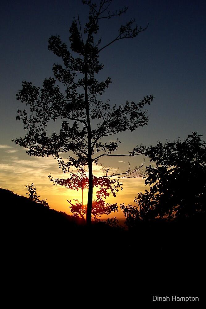 Va. Sunset#2 by Dinah Hampton