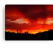 Desert Rain at Sunset Canvas Print