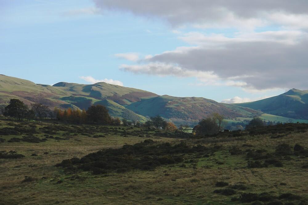 Welsh landscape by Linda Bretherton