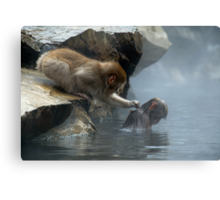 Monkey Day Spa Canvas Print