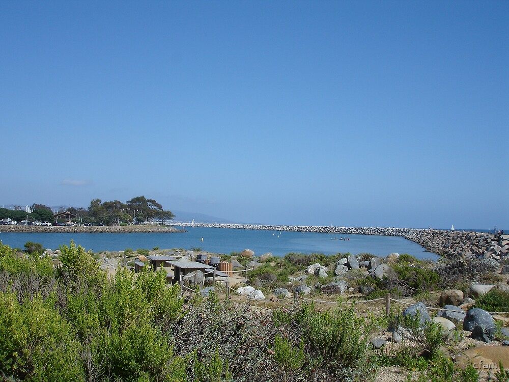 Dana Point Harbor by cfam
