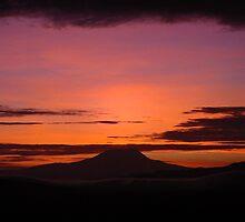 Kilimanjaro  by sofiaurbina