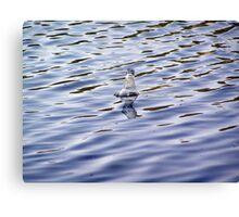Bottle in Water Canvas Print