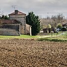 In the Gaujac countryside -  France by DebbyScott