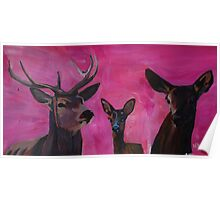 Winters Deer Family with Fawn and Hind Poster