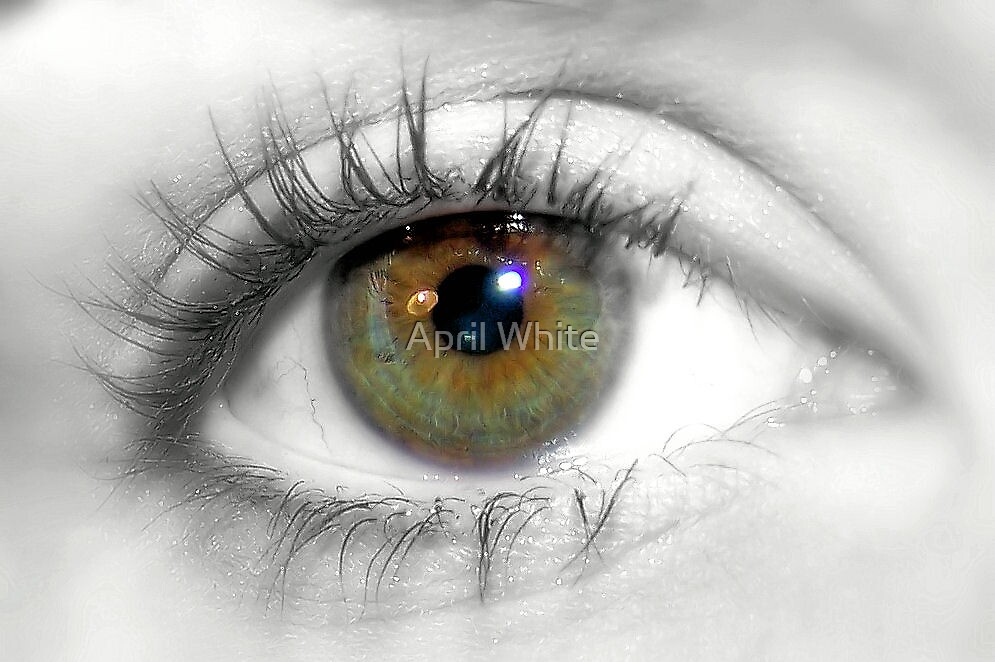 Macro Eye with Selective Color by xPressiveImages
