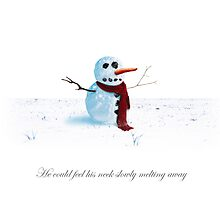 Snowman - Scarf Aches by dave  gregory