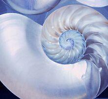 SeaShell. Blue Version  by JennyRainbow