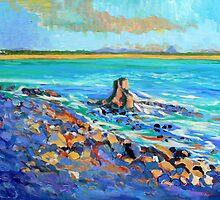 Noosa Rocks, Noosa National Park by Virginia McGowan