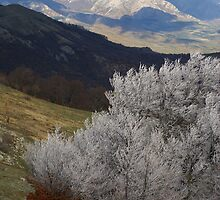 November in mountains. by vbez