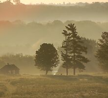 misty mornings by russmillard