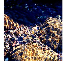 Rock Pool Photographic Print