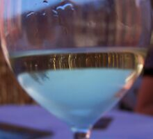 My life thru a wine glass by Megan Thomas