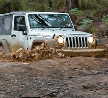 Jeep Wrangler Rubicon in the mud by Robert Pepper
