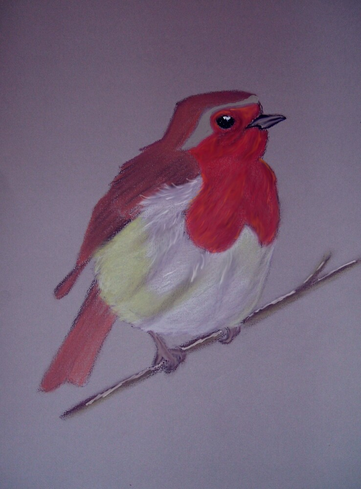 Little Robin by Catherine Brock