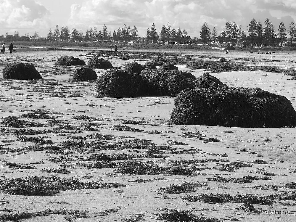 Seaweed by supasnap