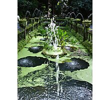Water feature at Paronella Park Queensland  Photographic Print