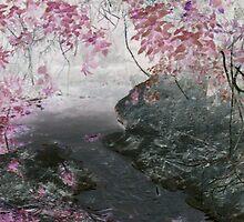 Fairy Grotto by Vivien Parkhouse