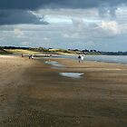 SUNDAY_BEACH_WALK by gerecho
