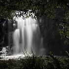 Sheoak Falls 2 by Heather Davies