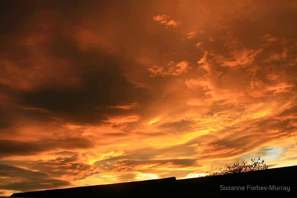 Red Sky For Hallowe'en by Suzanne Forbes-Murray