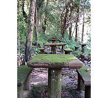 Picnic Tables at Paronella Park Queensland Photographic Print