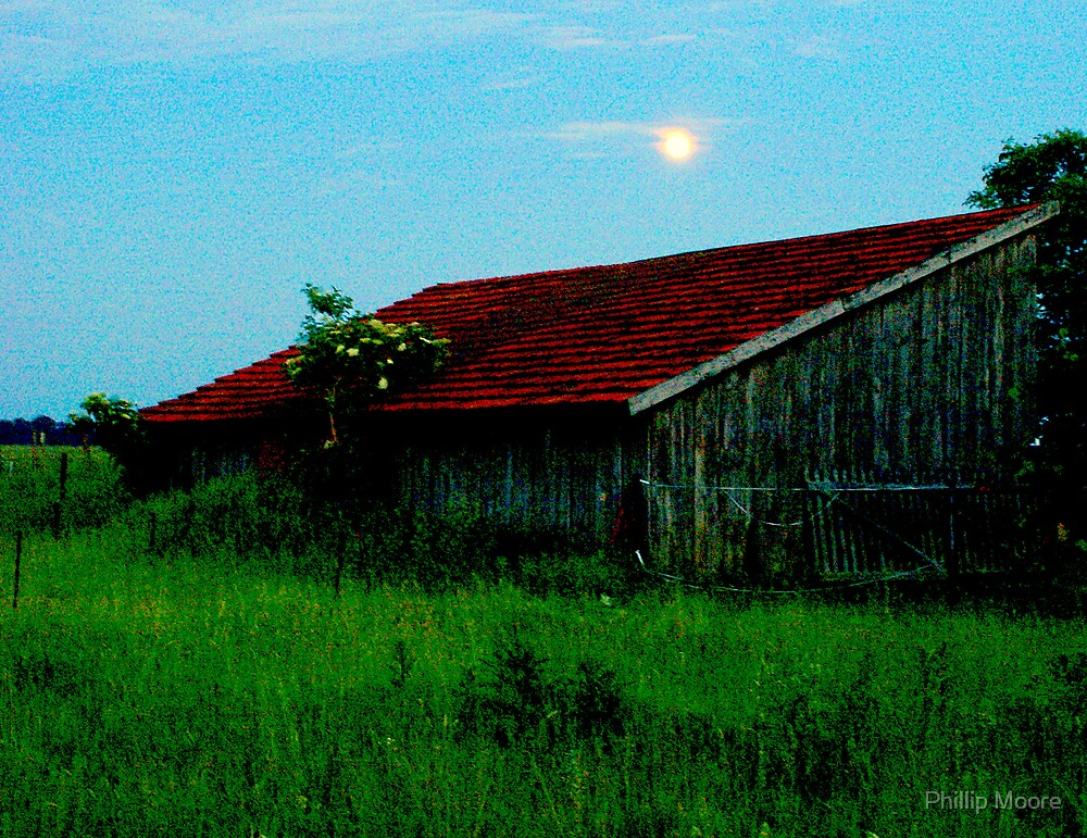 Moonlit Day by Phillip Moore
