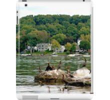 Cormorants Enjoying the Lake iPad Case/Skin
